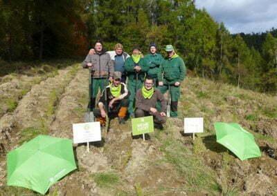 """YVES ROCHER – projekt """"Czas na Las"""" i 100 tysięcy drzew"""