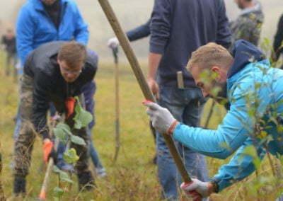 Grupa Raben - sadzenie w Krzywej (25)