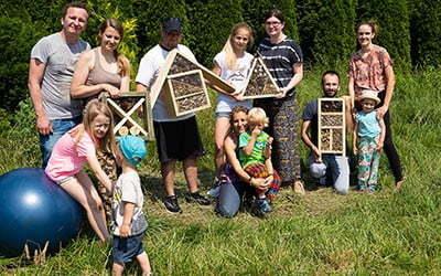 Budujemy domki dla owadów