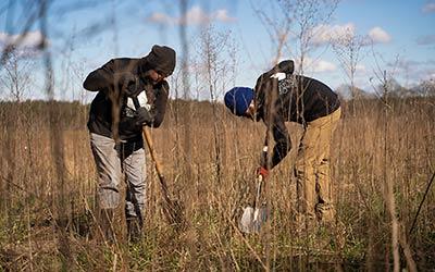 Sadzenie 1500 drzew dla LiNa-Medical