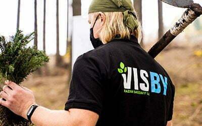 Sadzimy tysiąc drzew w Parku Narodowym Gór Stołowych dzięki VISBY