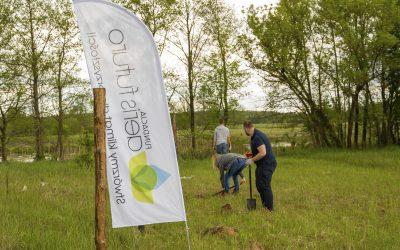 Czas na Las i 500 drzew wspólnie z firmą Siemens