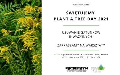 Świętuj z nami Plant A Tree Day 2021 – zapraszamy na warsztaty